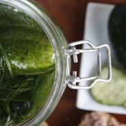 Cured Cucumber / Snabb Färsksaltad Saltgurka